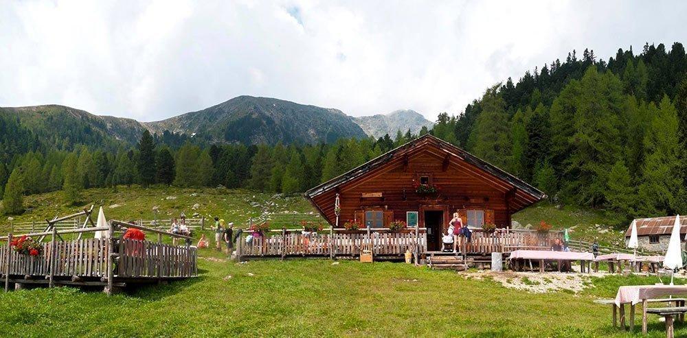 Lercherhof: vacanza in agriturismo con malga