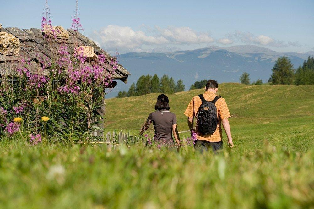 Escursione panoramica al Monte del Pascolo e Rifugio Lago Rodella