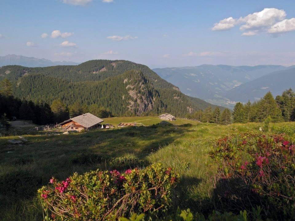 Il rifugio Lercher: paesaggio idilliaco di fronte a uno scenario alpino d'alta quota